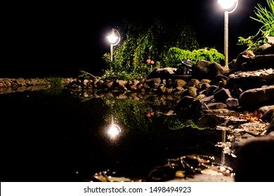 Garden pond at night. Illuminated pond shore in a night. Fish pond. Garden pond on natural landscape. Water garden natural pool. Exterior of a private garden. Pool with rocks