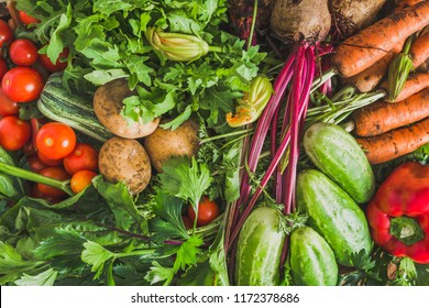 Garden produce and harvested vegetable. Farm fresh organic vegetables background.