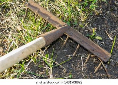 Garden rakes lying on the ploughed topsoil for planting-the concept of gardening, spring gardening, solar light