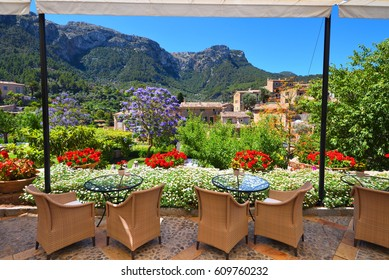 Garden restaurant with mountains view and Jacaranda trees