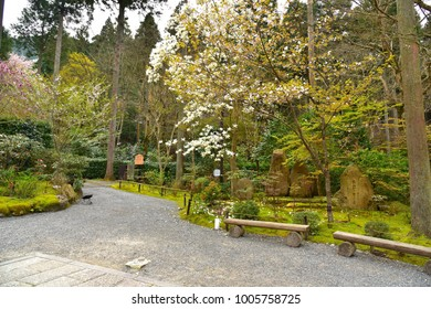 Garden of Sanzen-in Temple, Kyoto, Japan : April 10, 2016