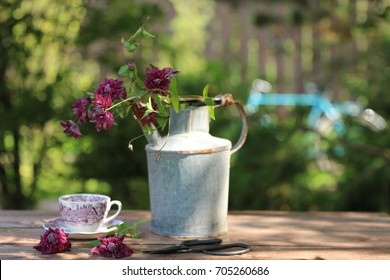 Garden scene with flowers in rusty vintage can, tea cup on aged table on tree and bicycle background, real photo, daylight