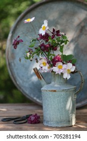 Garden scene with flowers in rusty vintage can, tea cup on aged table on tree and bicycle background, real photo, daylight, vertical photo