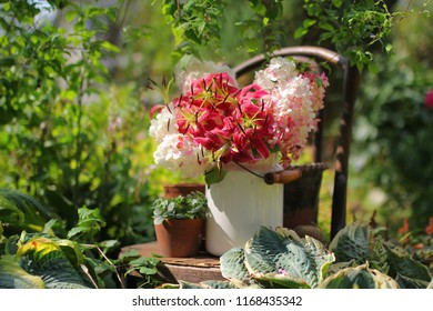 garden scene with vintage flower pots and a bouquet of bright pink lilies, gardening and floriculture theme