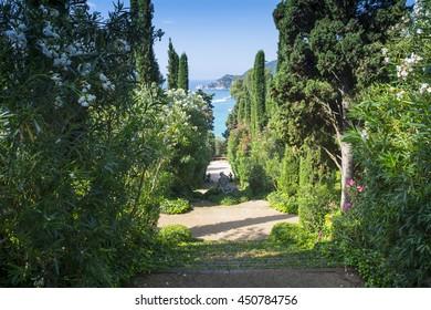 garden with sea views