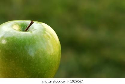 garden shot of green apple