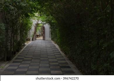 Garden side walk go to old door