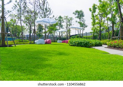 Garden of smooth green grass lawn with white and red beanbag under white umbrella, trees, shrub, gray curve pattern walkway, sand washed finishing on concrete paving in a good maintenance of park