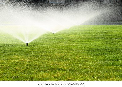 garden sprinkler on a sunny summer day during watering the green lawn
