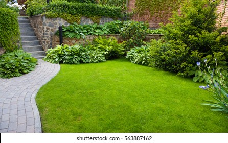 Garden stone path with grass growing up between the stones - Shutterstock ID 563887162