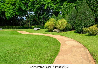garden in summer and green lawn landscape with trees.