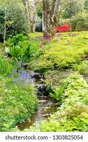Garden in summer with water cascade
