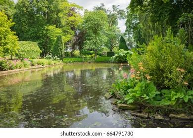 Garden in the summertime