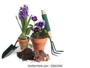 Garden Supplies of Pansies, Hyacinth, Sage and Planting Tools