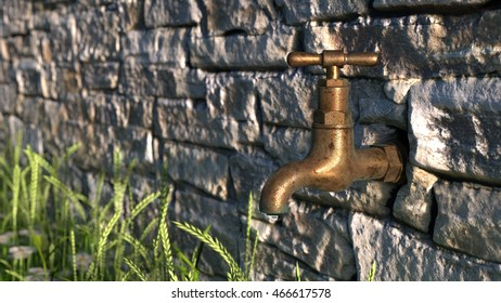 Garden Tap A rustic brass tap set in a stone garden wall with grass & daisies growing underneath. 3d render.