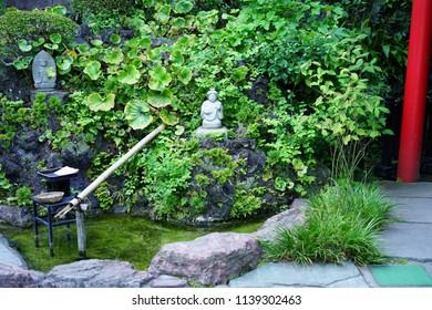 A garden in a temple in Kamakura.