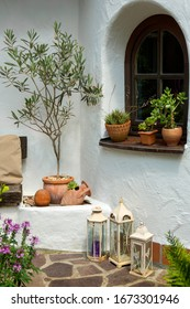 Garden terrace with window and Mediterranean plants