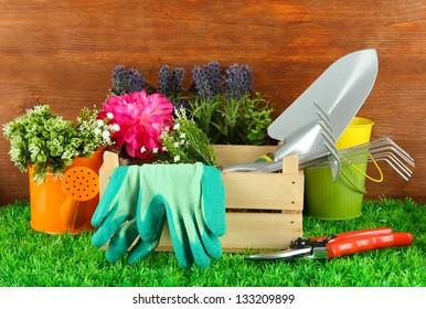 Garden tools on grass in yard