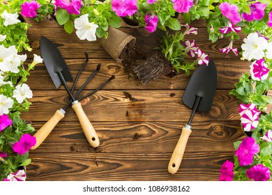 Garden tools on a wooden table with a spring flower border of white and magenta petunias viewed from above