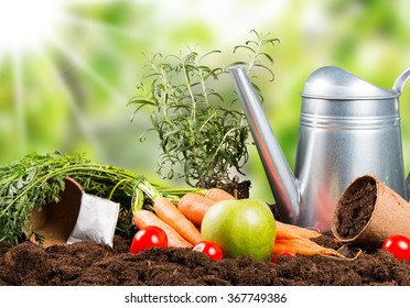 Garden tools with seedling with nature green background