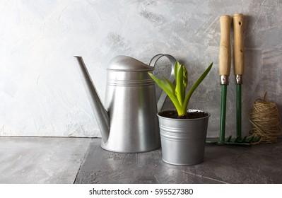 Garden tools watering can flower pot