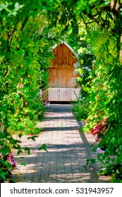 Garden trellis walkway hideout hidden tranquil sitting bench area outdoors empty shaded by vine and roses