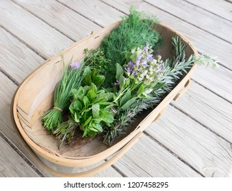 Garden trug of fresh organic herbs on wooden deck: chives, mint, thyme, rosemary, dill, sage with edible purple flowers