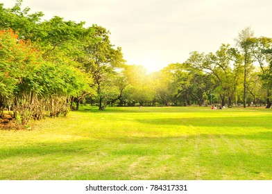 Garden in urban city in the morning scene in summer season of Bangkok, Thailand that is a nature landscape for relaxing and exercising