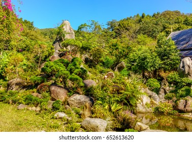 A Garden With Variety Of Plants And Trees With A Small Pond And Rocks In A