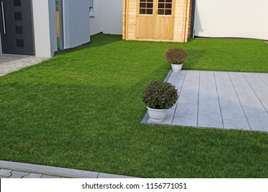 Garden with very neat rolled turf