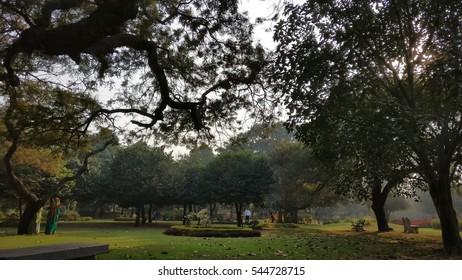 Garden View Buddha Jayanti Park New Stock Photo Edit Now 544728715