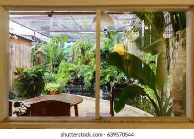 Garden view  through windows.