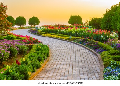 Garden walk way with sunrise in morning.