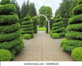 Garden walkway with arcs designed for wedding ceremonies