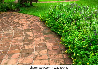 Garden walkway Made of clay tile.,Terra cotta tiles