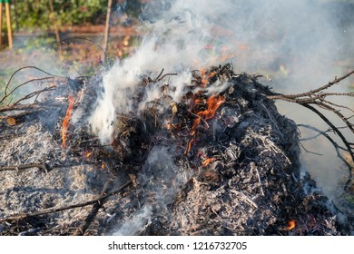 Garden waste burns