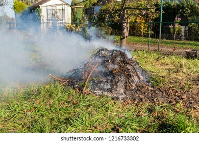 Garden waste is incinerated