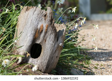 Garden wildlife haven. Beautiful natural hollow tree trunk hedgehog house decoration. Real dead wood stump retained for animals in a pretty wild country cottage garden border