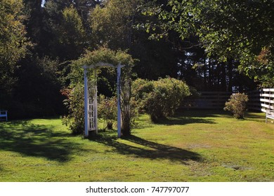 Garden and Wooden Arch