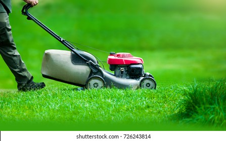 Garden worker with lawn mover in summer