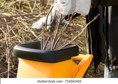 Garden works in autumn; Chopping of pruning waste with garden shredder; Noise pollution from garden tools