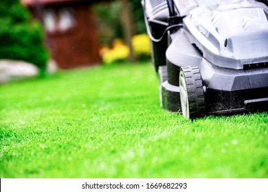 Gardener by electric lawn mower cutting green. Backyard care concept.