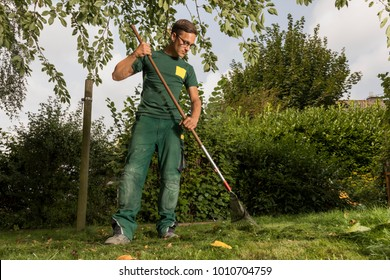 gardener cleaning the lawn