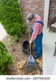 Gardener in denim dungarees raking dead leaves in front of a house with a metal garden rake in a high angle view