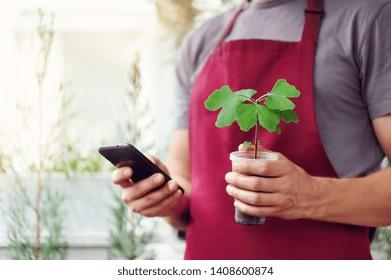 Gardener in the garden shop getting oder for ginkgo biloba by phone