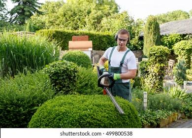 Gardener at gardening