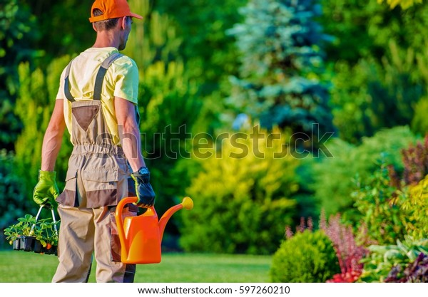 Gardener and His Garden Job To Do. Caucasian Professional Landscaper.