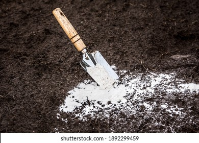 Gardener mixing dolomitic limestone powder in garden soil to change the pH ant to provide more nutrients for plants concept.