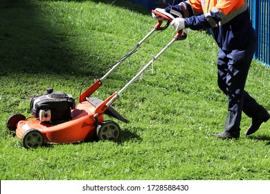 Gardener mowing the grass with lawn mower. Park improvement in sunny day
