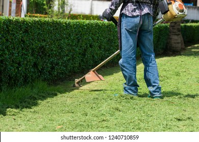 the gardener is mowing grass with string lawn mower.